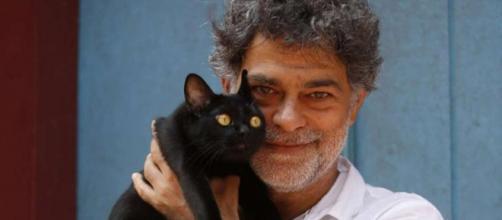 León e outros felinos se tornaram uma atração a parte. Imagem: Divulgação Rede Globo