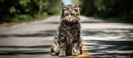 "New trailer released for Stephen King's ""Pet Sematary"" - CBS News - cbsnews.com"