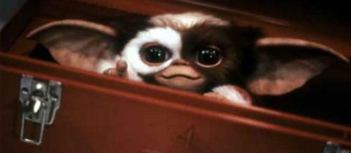 Les Gremlins seront de retour dans une série animée pour Warner ... - lesinrocks.com