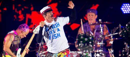 Red Hot Chili Peppers mistaken for Metallica by Belarus custom ... - independent.co.uk