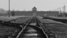 Svastiche e volantini antisemiti in una scuola americana: 'Ebrei, non vi vogliamo'