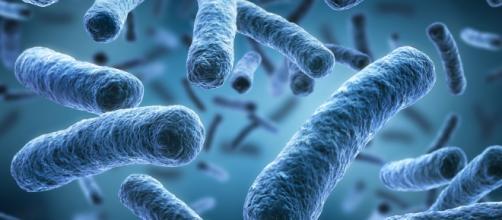 Antibiotico-resistenza: in Italia il maggior numero di vittime.