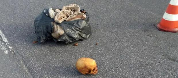 Ossos humanos caíram de um caminhão caçamba na pista da rodovia (Divulgação/Polícia Militar)