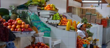 Aproveite as frutas típicas do outono - Foto: acervo Blasting News