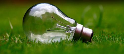 Oscar Green di Coldiretti: le aziende umbre in campo per ... - corrieredelleconomia.it