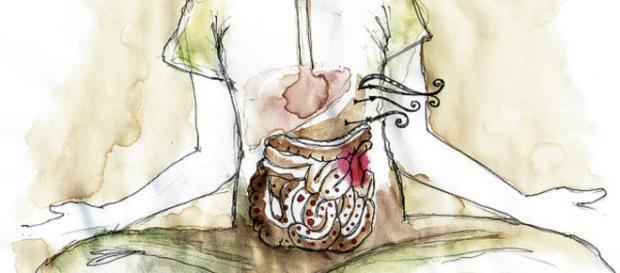 La disbiosi del microbiota intestinale indurrebbe la gluten sensitivity.