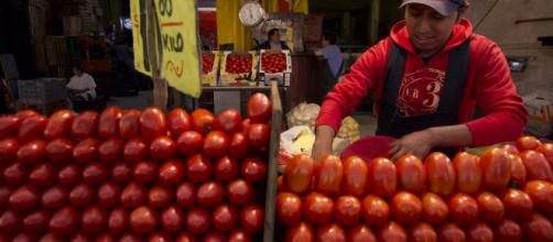 Aumentaron precios de algunos productos agrícolas. - televisa.com