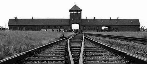 Crédit Musée d'Auschwitz-Birkenau | I've Been There ... - pinterest.co.uk