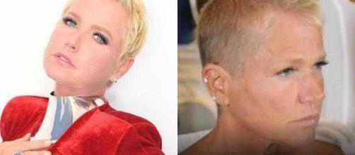 Xuxa antes e depois do novo visual (Arquivo Blasting News)