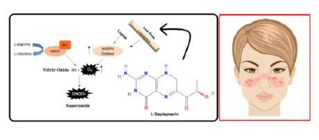 Nei pazienti con Lupus, il cofattore L-Sepiapterina riattiva un enzima, ripristinando la produzione di NO, un cardioprotettivo.