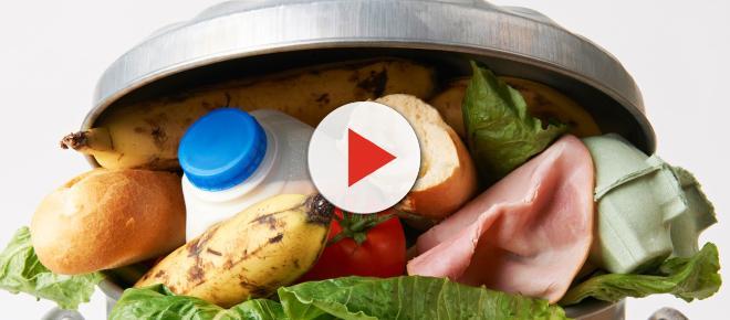 Lebensmittel: Gesetz gegen die Verschwendung vorerst nicht geplant