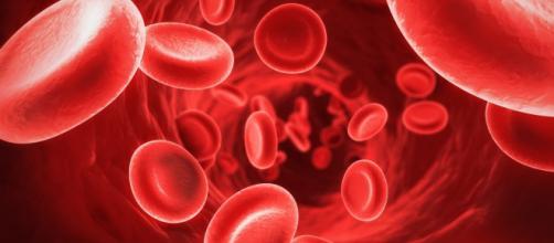La sangre es un líquido vital del cuerpo humano. - supercurioso.com