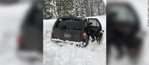 Hombre sobrevive atrapado en un coche con su perro