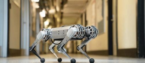 Il robot più veloce della storia.