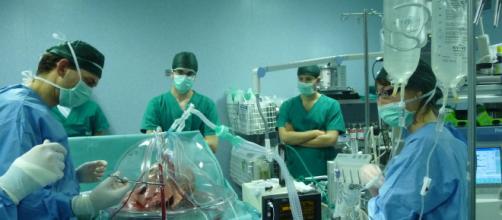 Padova, eccezionale trapianto: porzione di fegato si rigenera, salvo paziente non operabile