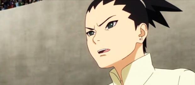 Shikadai esta considerando estudiar política y dejar de ser ninja un tiempo