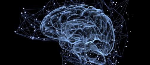Un joven muere por una plaga de gusanos en el cerebro