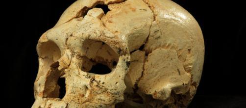 Spagna, il giacimento paleoantropologico di Atapuerca: patrimonio ... - meteoweb.eu