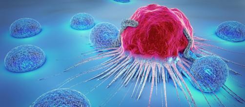Non siamo tutti uguali di fronte ai tumori - ohga.it