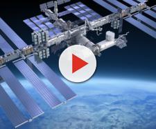 I topi sulla stazione spaziale si comportano in modo strano - meteoweb.eu