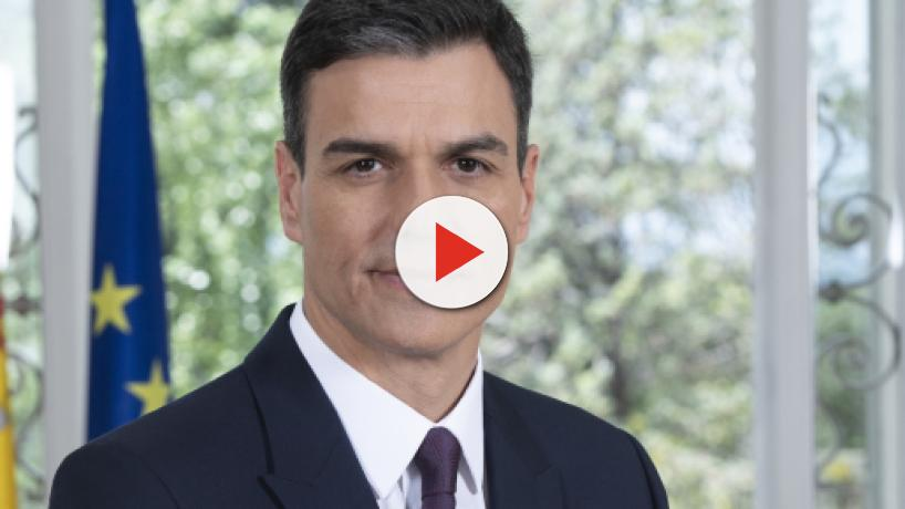 La reproducción asistida y debate sobre el cannabis, en el programa electoral del PSOE