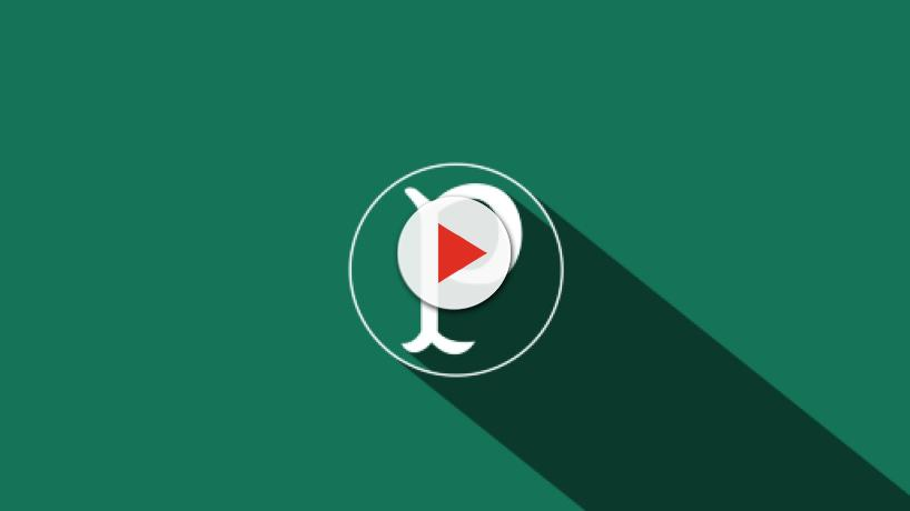 7 Curiosidades sobre o Palmeiras
