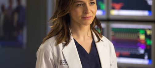 Amelia incontra la madre e le sorelle nell'episodio 15x21 di Grey's Anatomy.