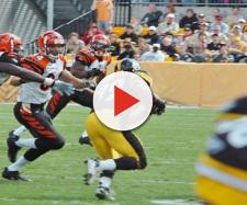 The Bengals are not considered to be remotely good. [Image via SteelCityHobbies/YouTube]