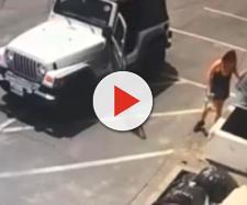Filmata mentre getta sette cuccioli appena nati nei rifiuti: un passante li salva e la denuncia