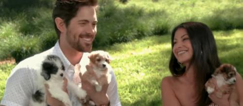 'When Calls the Heart's' Chris McNally soaked in puppy love on Hallmark's summer movie preview. - [HallmarkChannel / YouTube screencap]
