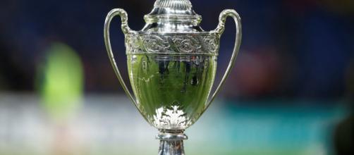 Coupe de France : PSG - Rennes en finale
