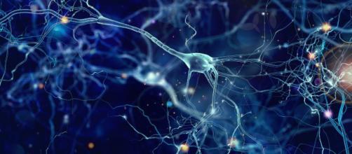 Entendiendo las redes neuronales: De la neurona a RNN, CNN y Deep ... - ia-latam.com