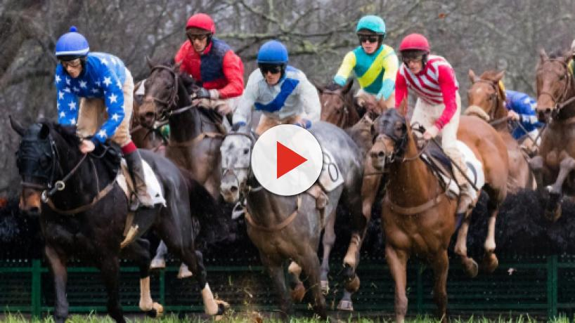 Magnificent Racehorses released in build up to Grand National