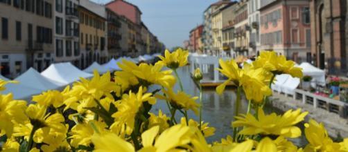 Fiori e Sapori: mostra mercato domenica 14 aprile