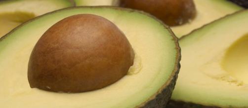L'avocado sostituito ai carboidrati della dieta aiuta a controllare il metabolismo, la fame e il peso corporeo. (Canva)