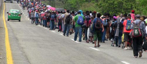 Migrantes siguen esforzándose para arribar a EEUU. - cadenanoticias.com