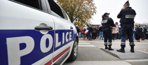 Nantes : Le chien policier Tyson médaillé un an après sa blessure face à des voleurs