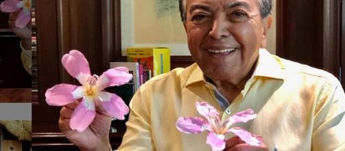 Maurício de Souza encantou os internautas com publicação. (Reprodução/Instagram/@mauricioaraujosousa)