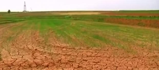 Poor harvests compound North Korea's food crisis. [Image source/TRT World YouTube video]