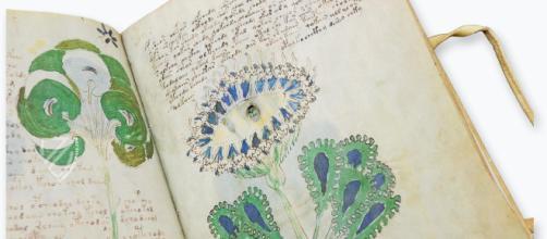 Decifrato il manoscritto 'Voynich': è scritto in una lingua romanza e contiene cure erboristiche e un oroscopo