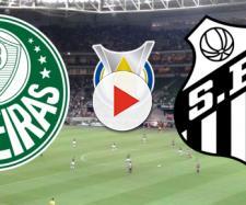 Palmeiras x Santos terá transmissão ao vivo na TNT. (Reprodução/ Montagem)