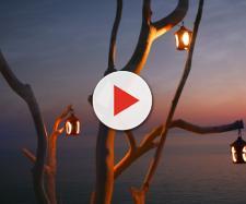 L'oroscopo del giorno 24 maggio da Bilancia a Pesci: nuovi amori per gli Acquario