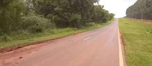 Idoso foi atacado nesta estrada em Cerqueira César. (Divulgação/Corpo de Bombeiros)