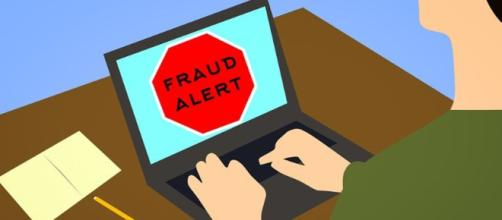 Surrogate company allegedly defrauded many people in Florida - Image credit - CCO / Pixabay