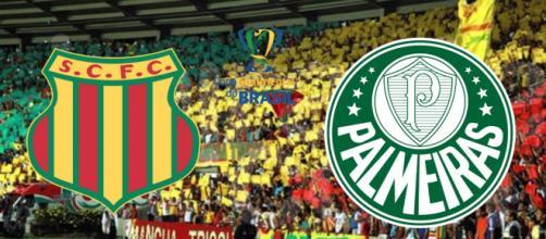 Sampaio Corrêa x Palmeiras: transmissão ao vivo na tv e na internet. (Reprodução/ Montagem)