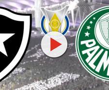 Botafogo x Palmeiras terá transmissão ao vivo no Premiere. (Reprodução/Montagem)