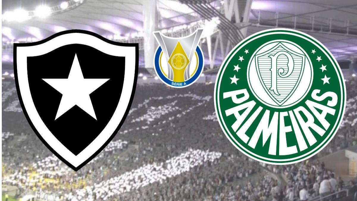Resultado de imagem para Botafogo x Palmeiras