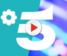 Mediaset Canale 5 - Channel branding - Monkey Talkie - monkeytalkie.com