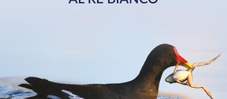 """Il nuovo romanzo di Simone Giusti: """"Scacco matto al Re Bianco"""""""