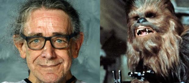 """Peter Mayhew who played the role of Chewbacca in the """"Star Wars"""" films has died at 74. [Images Florida Supercon and Fair Use/Wikimedia Commons]"""